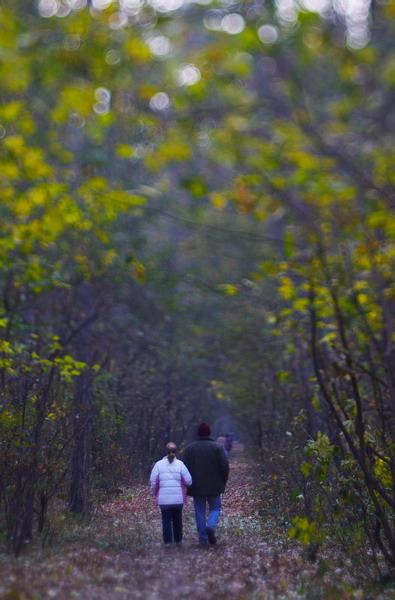 Лесно мазало… като разходка в парка